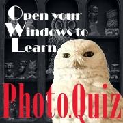 Photo.Quiz